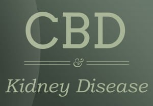 cbd-relief-Kidney-Disease