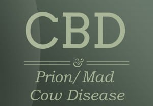 cbd-relief-Prion-Mad-Cow-Disease