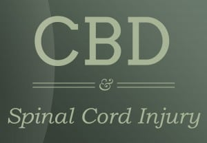 cbd-relief-Spinal-Cord-Injury
